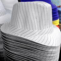 Pin Stripe Hat