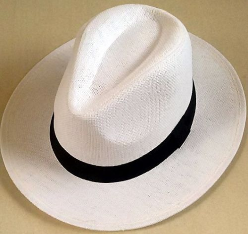 White Fedora Straw Hat
